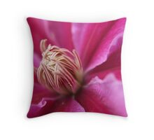 Marvels Of Nature Throw Pillow