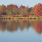 The Colors of Fall on the Lake by lindsycarranza