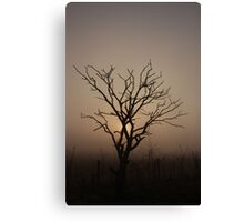 Foggy Morning Silhoutte Canvas Print