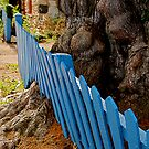 Blue Fence by Paul Moore