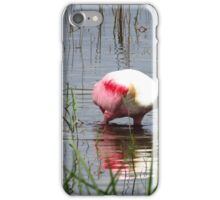 Roseate Spoonbill  iPhone Case/Skin