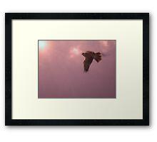 Ladyhawk Framed Print