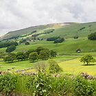 Wensleydale UK by Pauline Tims