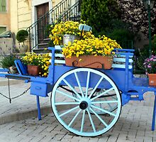 Gorgeous handcart by daffodil