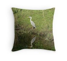 whos looking at who Throw Pillow