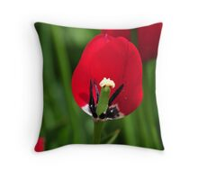 Barely Red Throw Pillow