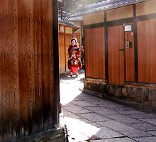 Geisha Spotting - a Gaijin pasttime by fenjay