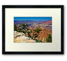 Grand Canyon Over The Edge Framed Print