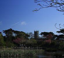 Skerries Church & Grounds by Martina Fagan