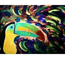Keel Billed Toucan Photographic Print