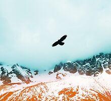 Freedom by lawleypop