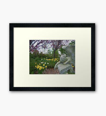 Weeping Angel © Framed Print