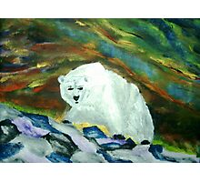 Polar Bear Aurora Photographic Print