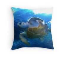 At the Two Oceans Aquarium. Cape Town. South Africa Throw Pillow