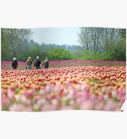 A Walk In The Tulips. Poster