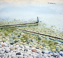 Driftwood at Pebble Beach by Douglas Hunt