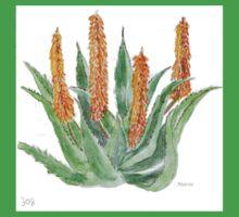 Aloe ferox sketch Baby Tee