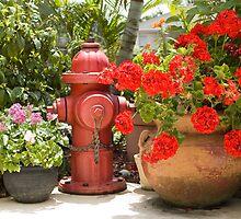 Garden Hydrant by Donna Adamski