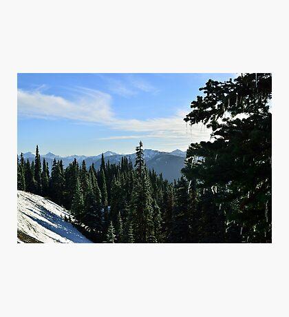 Hurricane Ridge, Olympic National Park, Washington Photographic Print
