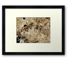 The Hidden Land – Gossamer Cave 2 Framed Print