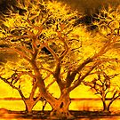Golden Tree by JohnDSmith