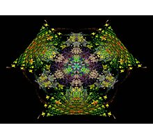 Fractal 33 Photographic Print