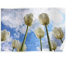 White tulips on cloudy sky watercolor Poster