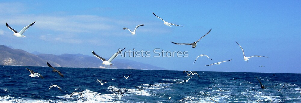 BIRDS PANORAMIC by Artists Stores