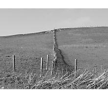 Fence Photographic Print
