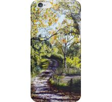 Autumn in the air iPhone Case/Skin
