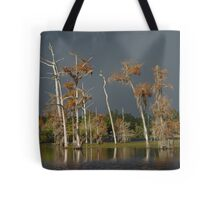 Lull Before the Storm Tote Bag