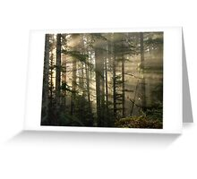 Rainforest Forensics Greeting Card