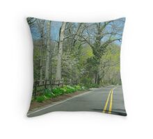 Through the Windshield Throw Pillow
