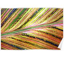 Leaf Wrapping Paper Poster