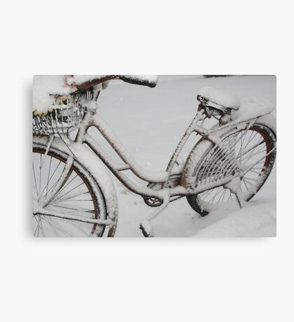 April Snow II   Canvas Print
