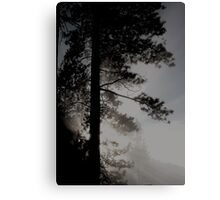 Giants in the mist.. Canvas Print