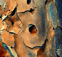 rough stuff by Tamara Cornell