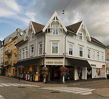Norwegian Town Panorama by emmettm