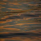 Warm Reflections by Barbara Burkhardt