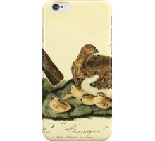 James Audubon Vector Rebuild - The Birds of America - From Drawings Made in the United States and Their Territories V 1-7 1840 - Willow Ptarmigan iPhone Case/Skin