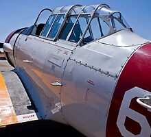 North American Rokwell Harvard AT-6C (SAAF 69) (ZU-FNE) by RatManDude