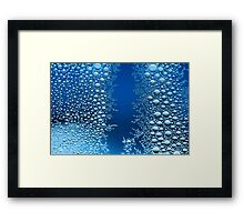 The Patterns of Nature Framed Print