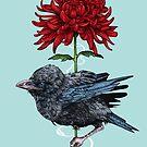 Baby Crow by Squishysquid