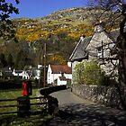 Blairlogie Village by Jeremy Lavender Photography