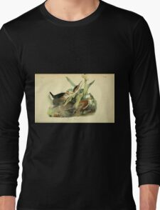 James Audubon Vector Rebuild - The Birds of America - From Drawings Made in the United States and Their Territories V 1-7 1840 - Green Heron Long Sleeve T-Shirt