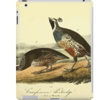 James Audubon Vector Rebuild - The Birds of America - From Drawings Made in the United States and Their Territories V 1-7 1840 - Californian Partridge iPad Case/Skin