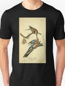 James Audubon Vector Rebuild - The Birds of America - From Drawings Made in the United States and Their Territories V 1-7 1840 - Passenger Pigeon T-Shirt