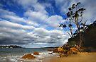 Cocora Beach - Eden by Darren Stones