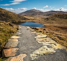 Miners Path by Adrian Evans