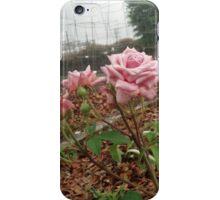 Ghetto Rose iPhone Case/Skin